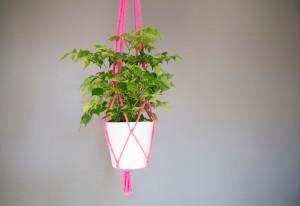 Neon pink macrame plant holder